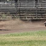 Detaliu foto - Campionatul national de dirt track perechi 5 august (143 of 190)